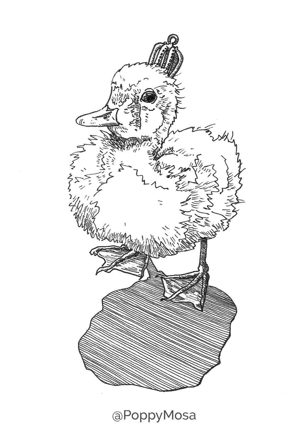 King Duckling